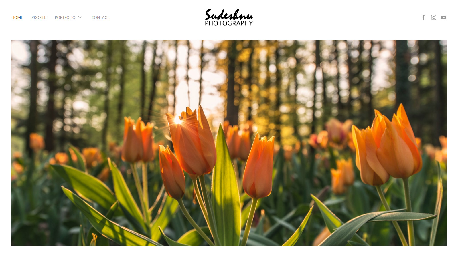 Screenshot from Photography Portfolio Demo Website homepage