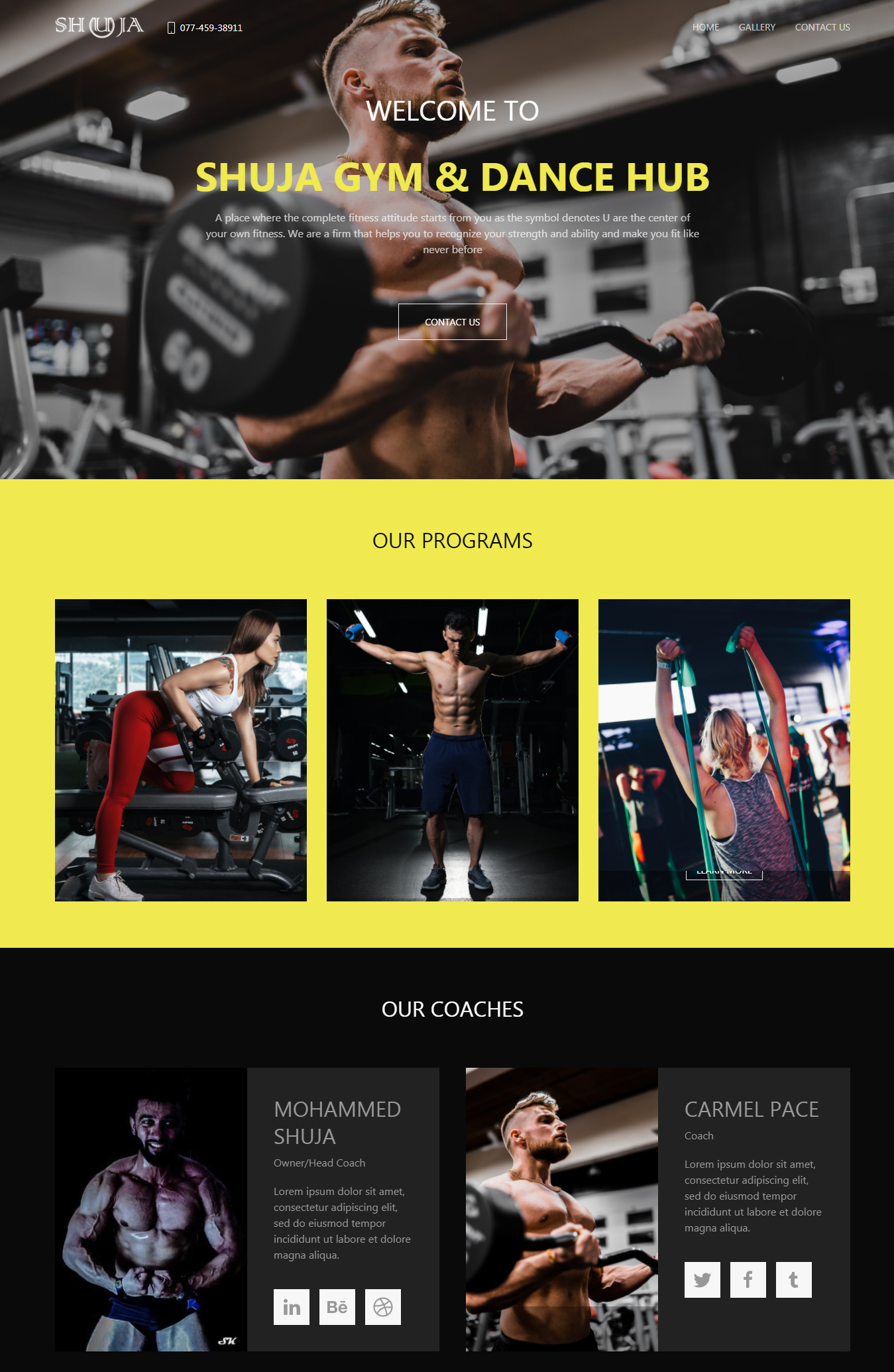 Fitness and Health Demo Website